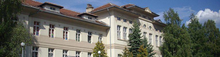 Collège international français