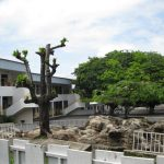 Ecole Publique Conventionnée Gros Bouquet 2 (Libreville, Gabon)