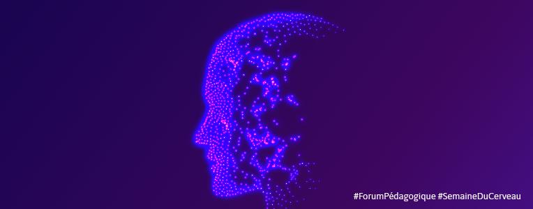 Semaine du cerveau - réseau mlfmonde - 2021 - banniere
