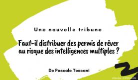 Intelligences multiples - mlfmonde - Toscani - banniere