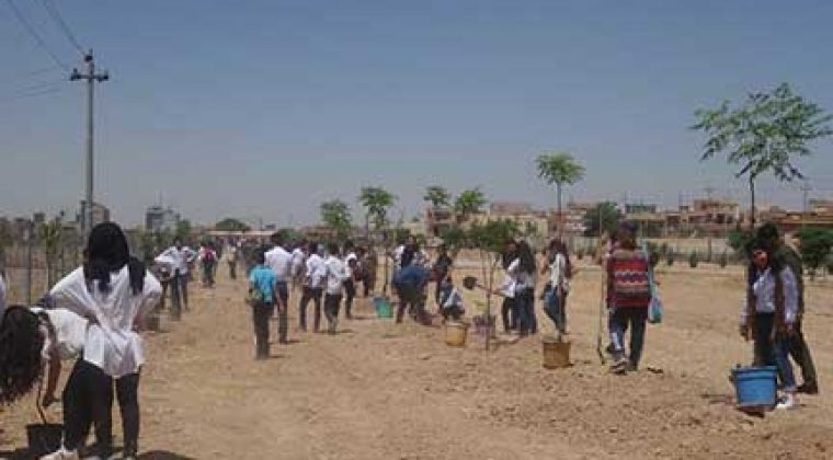 Les élèves de l'école Danielle Mitterrand d'Erbil s'impliquent dans le reboisement du Kurdistan d'Irak – mai 2017