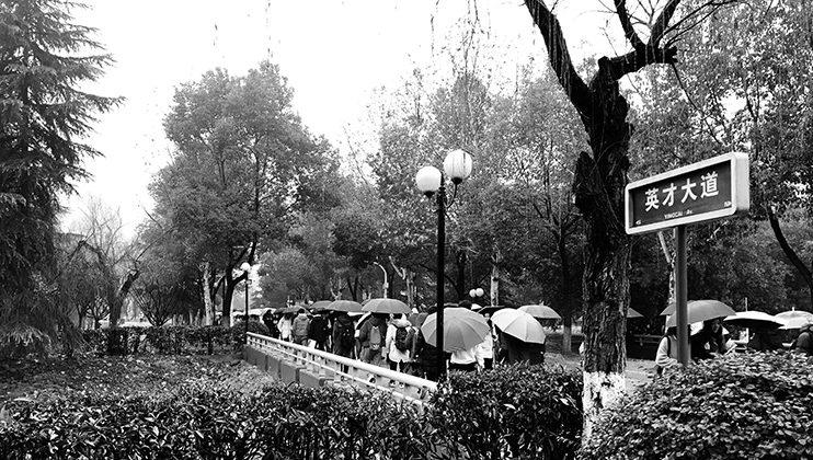 Les parapluies de Wuhan, Maya